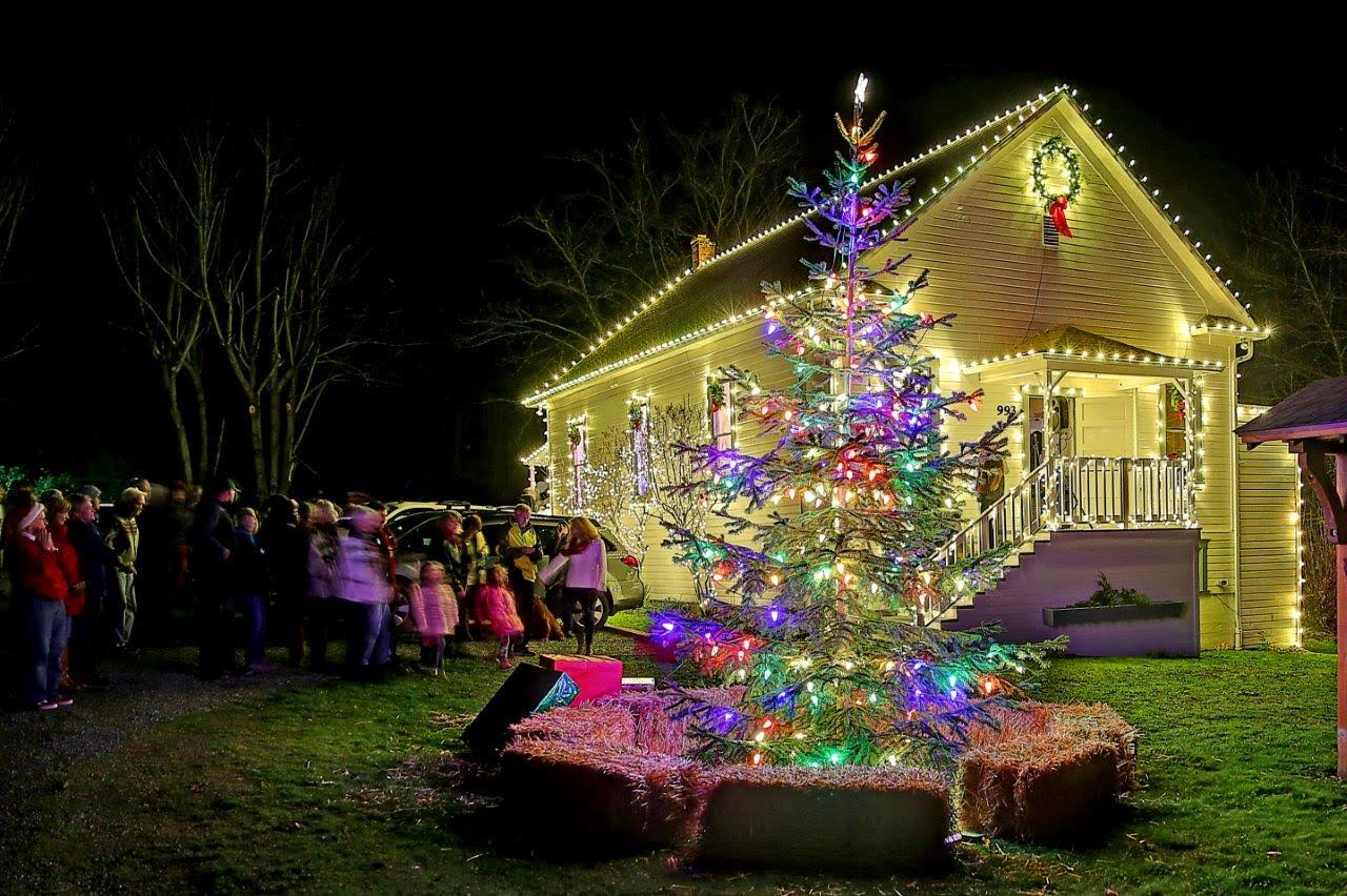 Holiday lighting-Lakeland FL Outdoor Lighting Installers-We Offer Outdoor Lighting Services, Landscape Lighting, Low Voltage Lighting, Outdoor LED landscape Lighting, Holiday Lighting, Christmas Lighting, Tree Lighting, Canopy Lighting, Residential outdoor Lighting, Commercial outdoor Lighting, Safety Lighting, Path and Garden Lighting, Mini lights and flood lights, Landscape Lighting installation, Outdoor spot lights, Outdoor LED garden Lighting, Dock Lighting, Accent lights, Deck and patio lights, Security lights, Underwater Lighting, Tree upLighting, Outdoor Lighting repair services, and more.